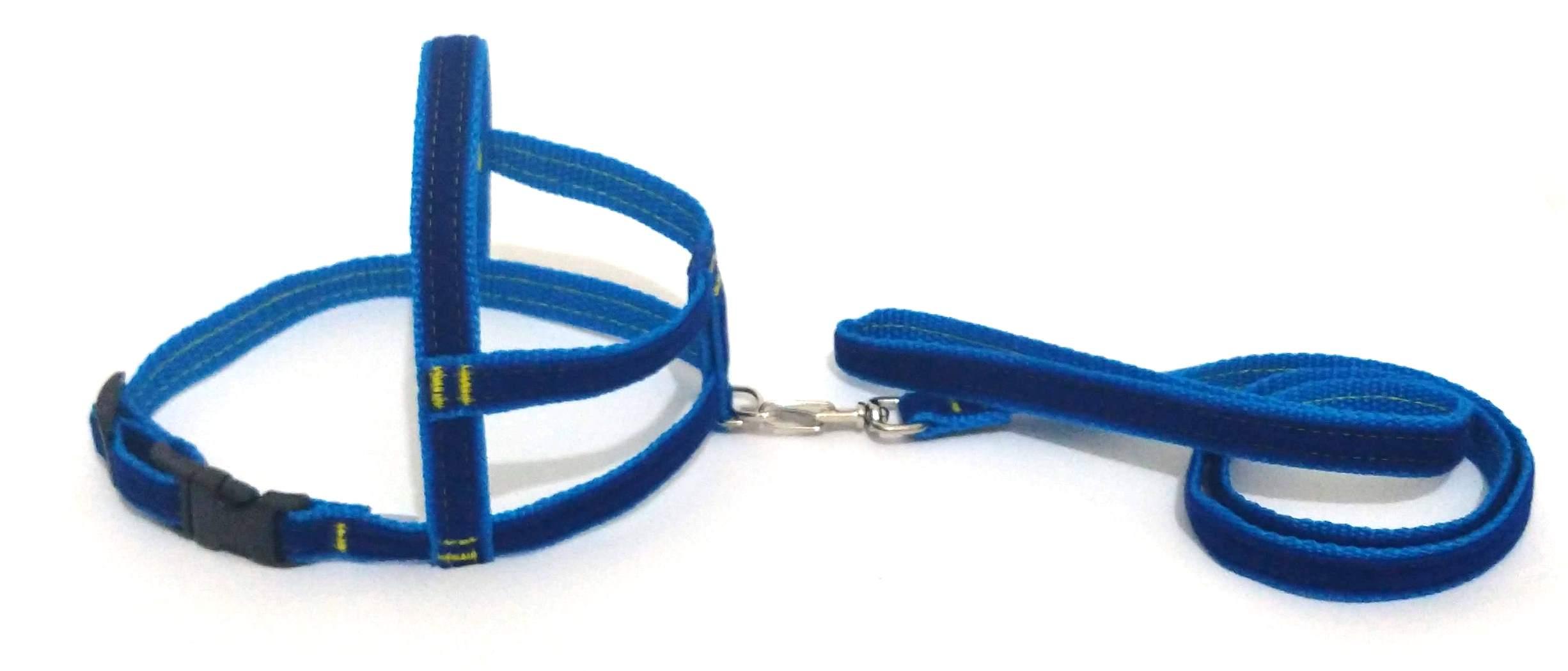 Conjunto Peitoral De Veludo Liso Azul Tamanho 05