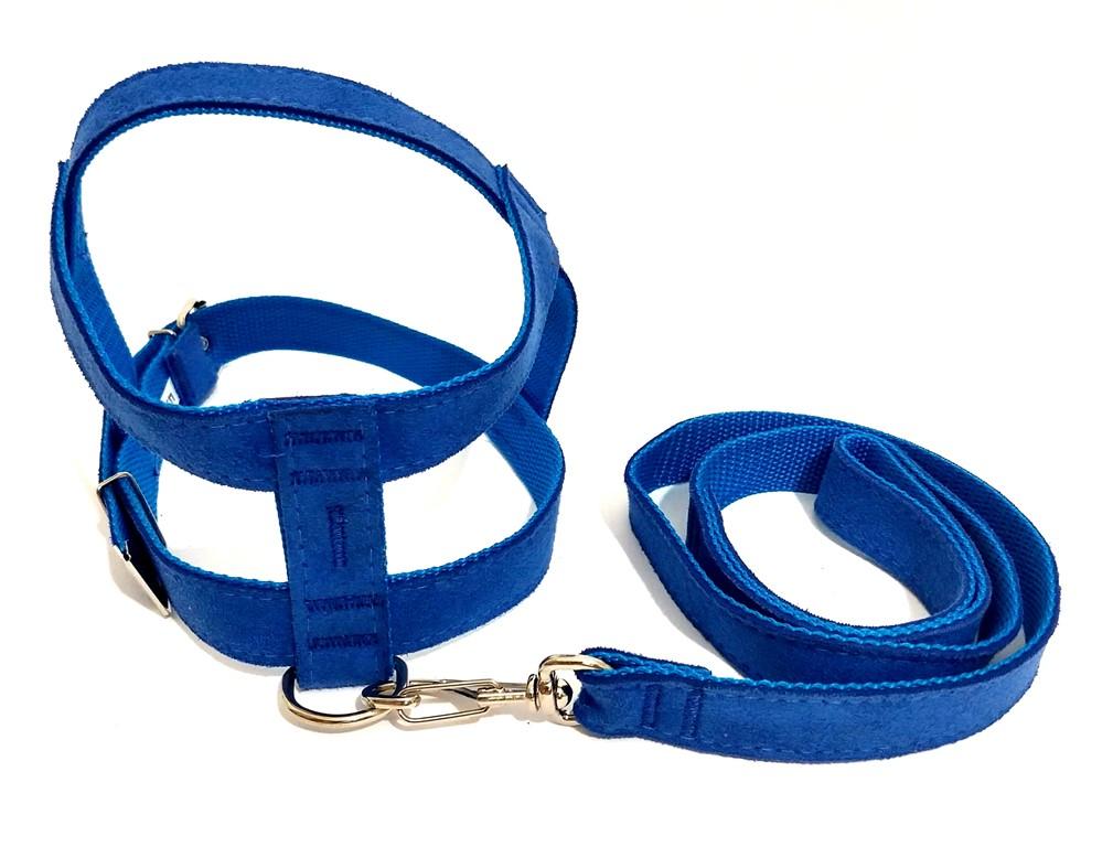 Conjunto Peitoral E Guia De Camurça 25Mm Azul Tamanho 6